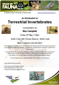 Terrestrial Invertebrates talk