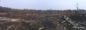 Black Swamp February 2014