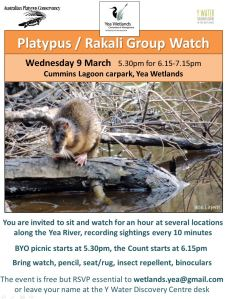 platypus watch jpg